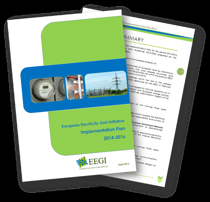 European Electricity Grid Initiative (EEGI) EEGI Research and Innovation Roadmap