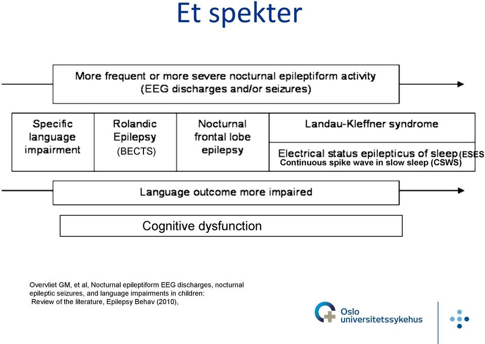 epileptiform EEG discharges, nocturnal epileptic seizures, and