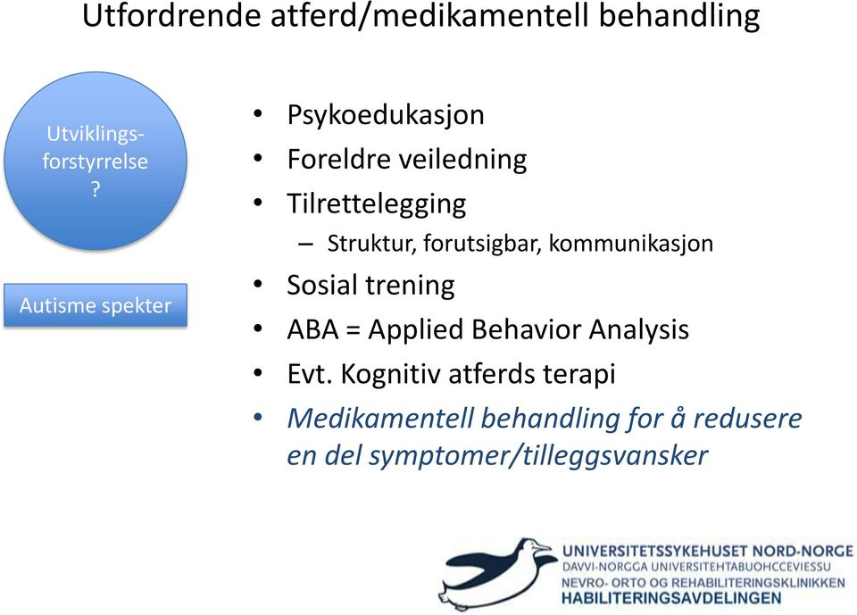 trening ABA = Applied Behavior Analysis Evt.