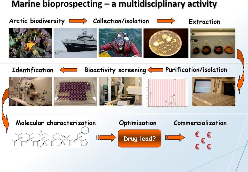Identification Bioactivity screening