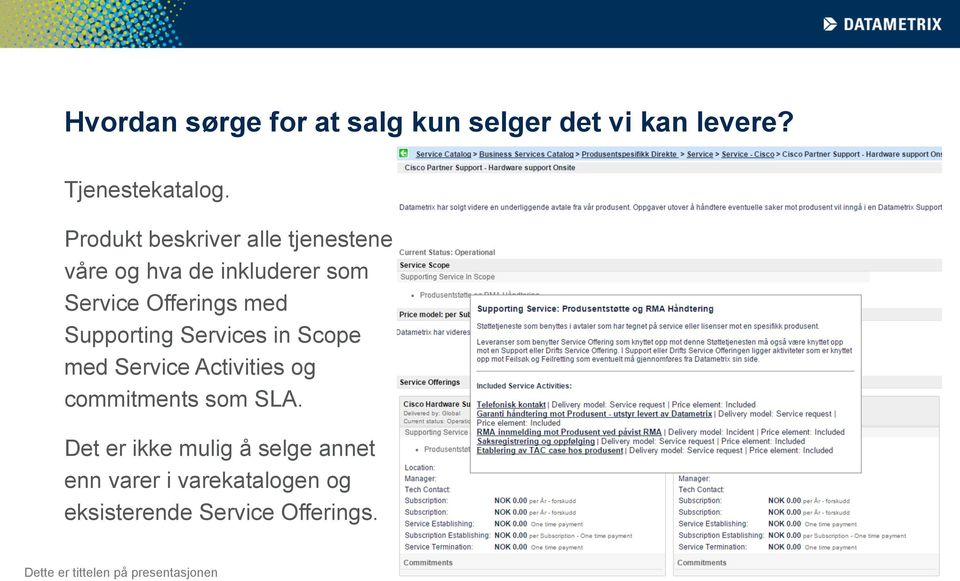 Supporting Services in Scope med Service Activities og commitments som SLA.