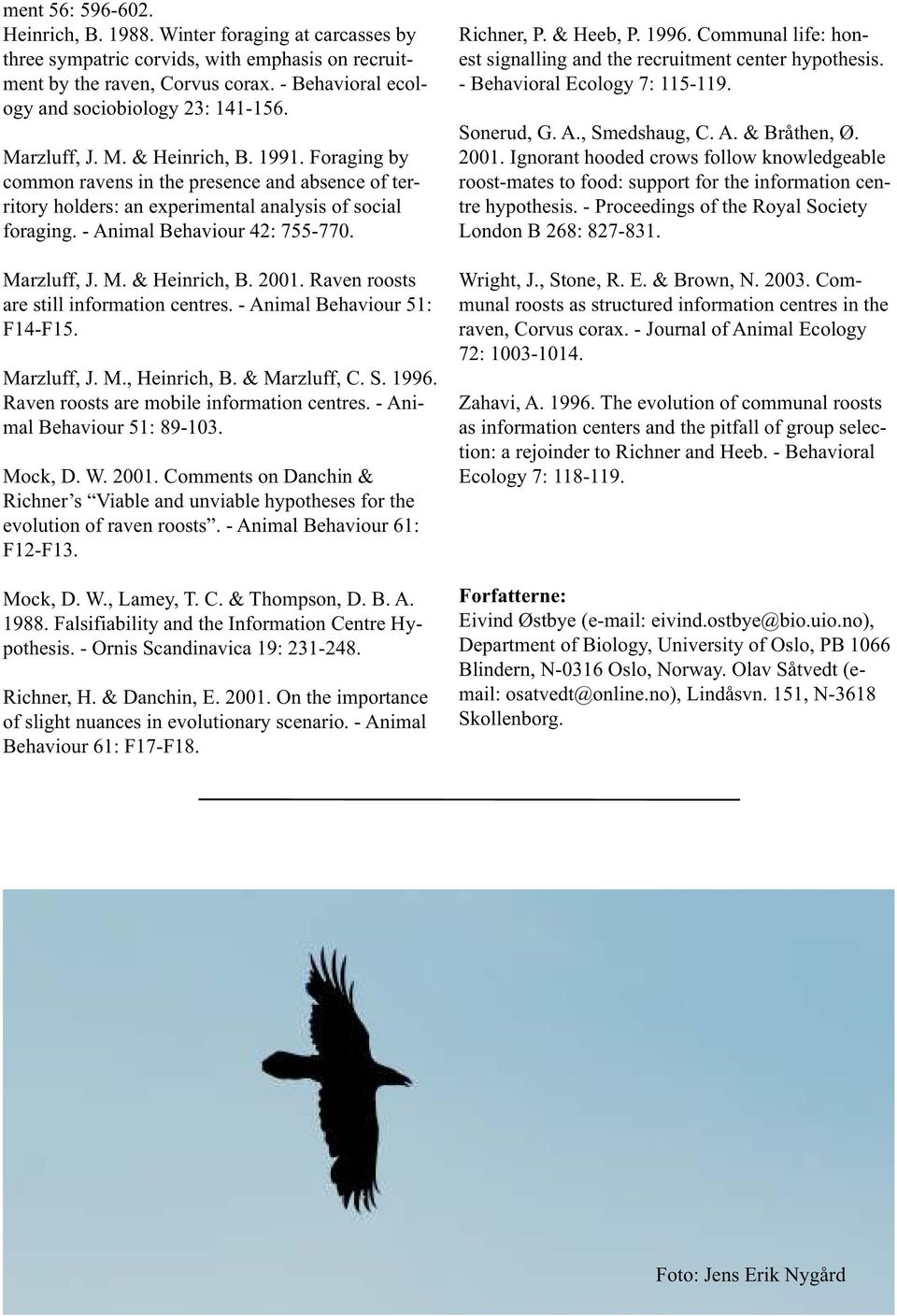 Foraging by common ravens in the presence and absence of territory holders: an experimental analysis of social foraging. - Animal Behaviour 42: 755-770. Marzluff, J. M. & Heinrich, B. 2001.