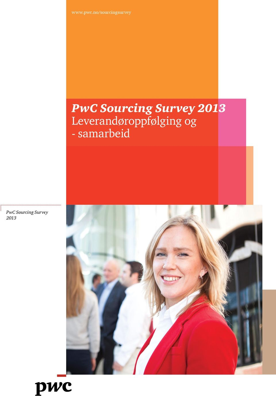 Sourcing Survey 2013