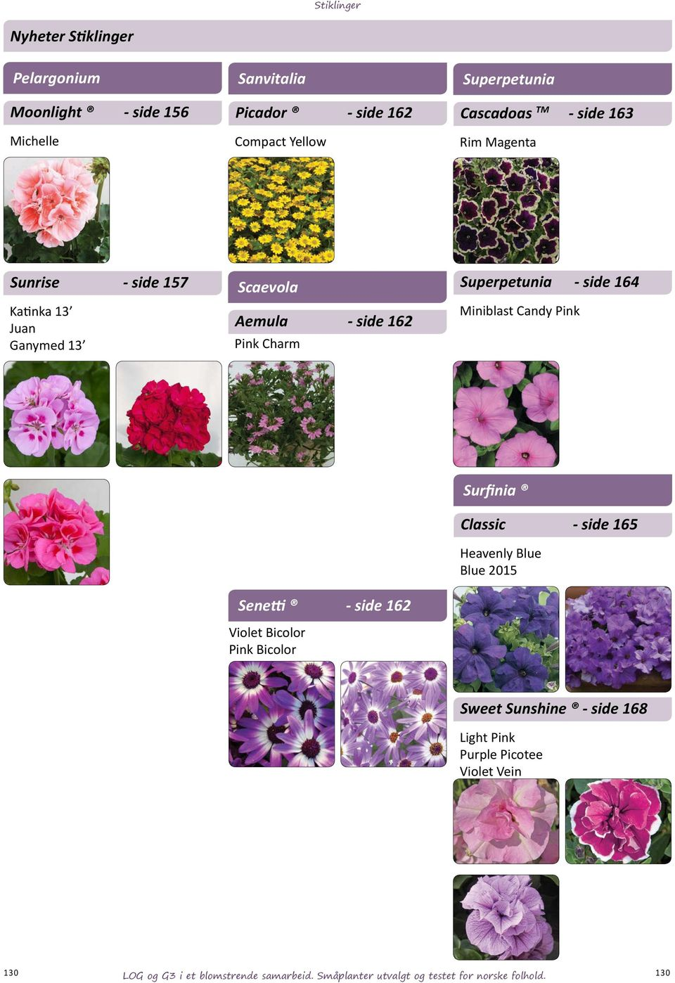 side 164 Miniblast Candy Pink Senetti - side 162 Violet Bicolor Pink Bicolor Surfinia Classic - side 165 Heavenly Blue Blue 2015 Sweet