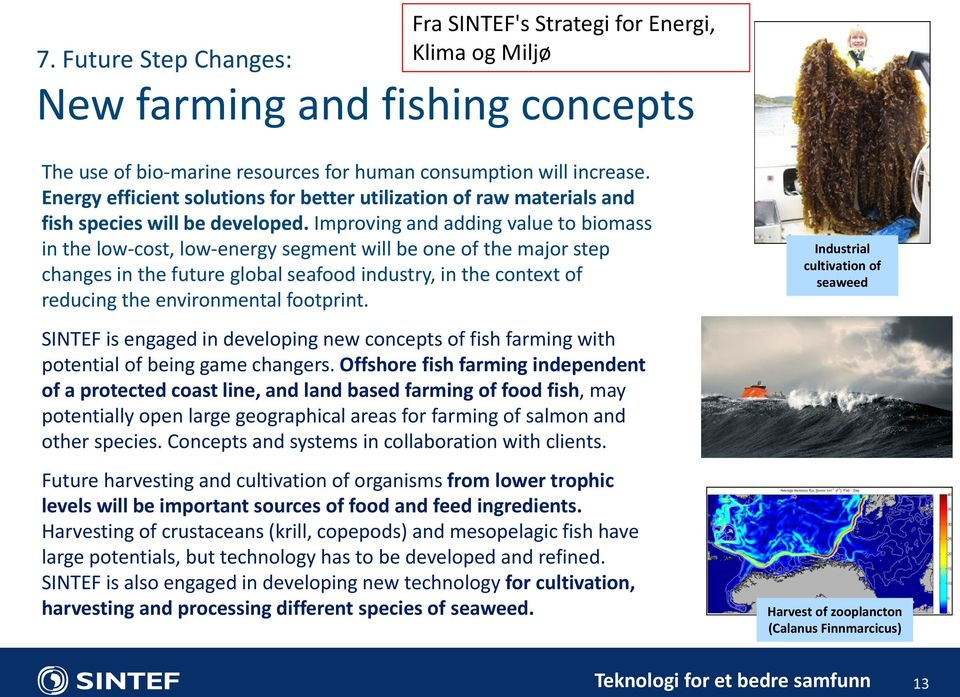Improving and adding value to biomass in the low-cost, low-energy segment will be one of the major step changes in the future global seafood industry, in the context of reducing the environmental