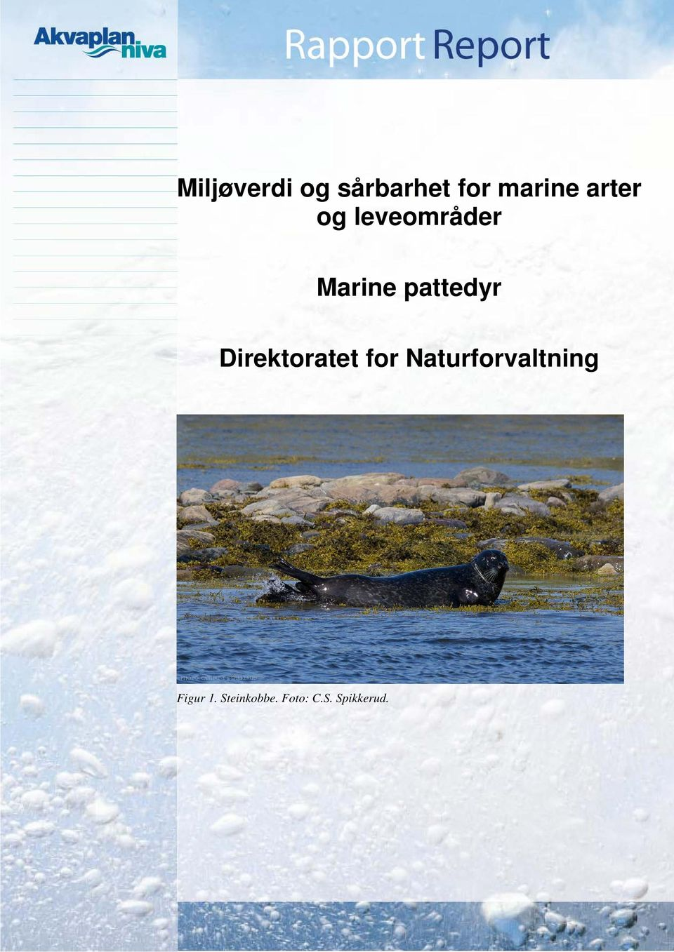 Direktoratet for Naturforvaltning