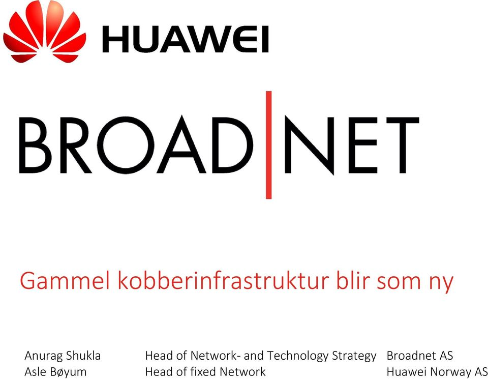 Technology Strategy Broadnet AS Asle