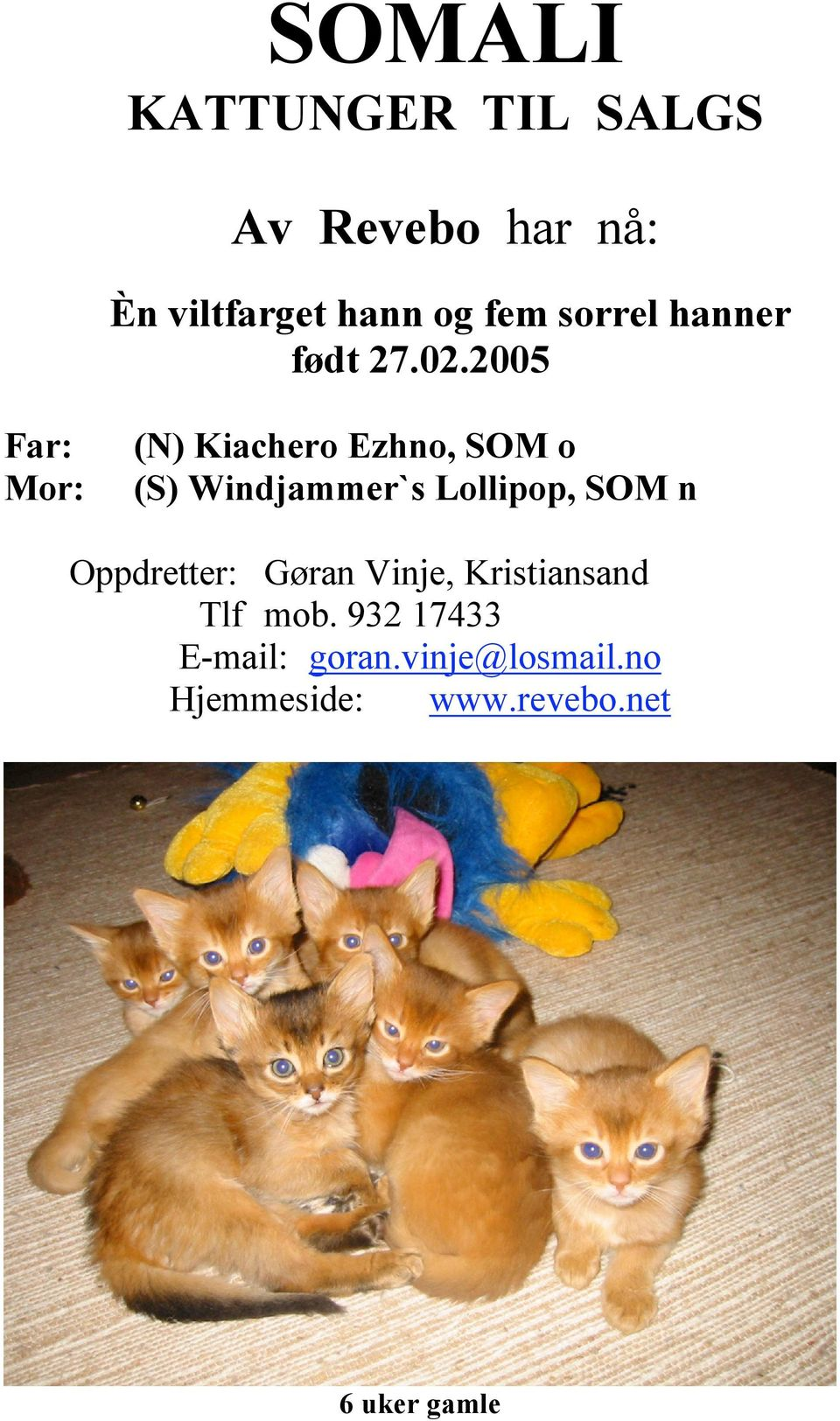 2005 Far: Mor: (N) Kiachero Ezhno, SOM o (S) Windjammer`s Lollipop, SOM n