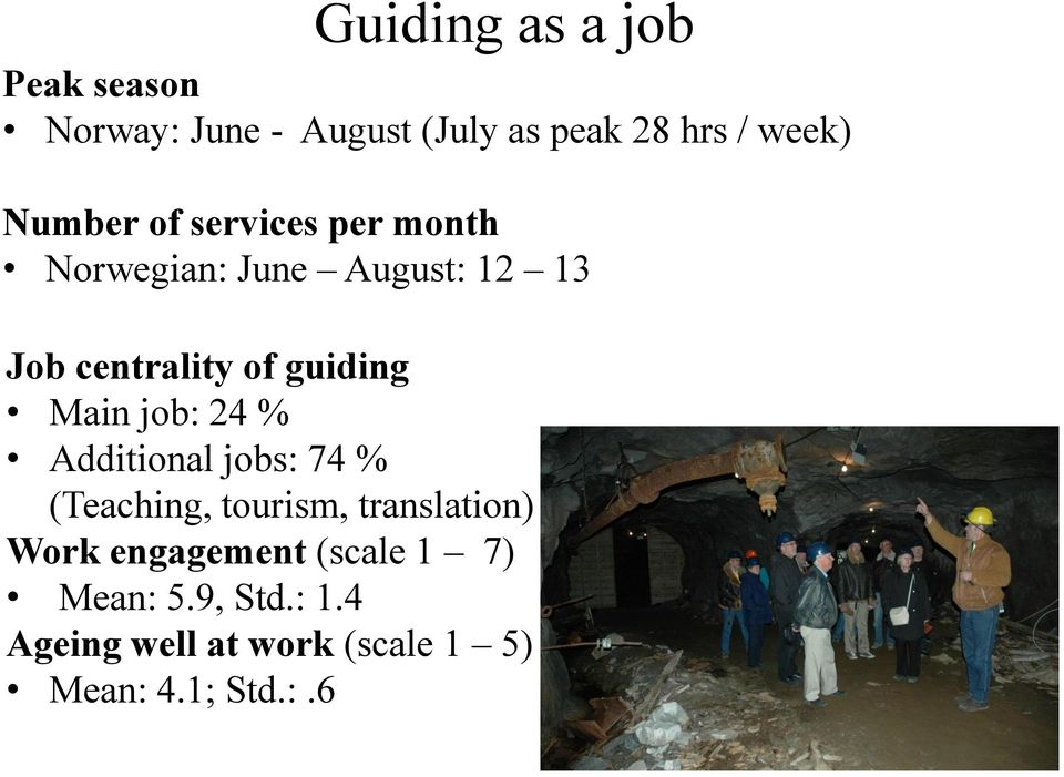 guiding Main job: 24 % Additional jobs: 74 % (Teaching, tourism, translation) Work