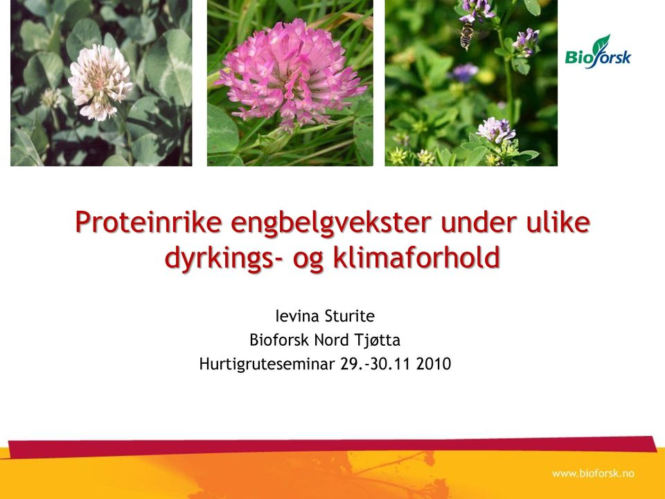 Ievina Sturite Bioforsk Nord