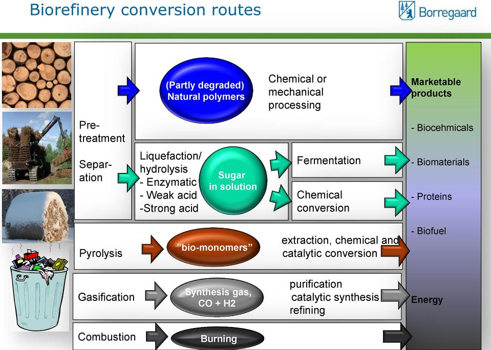 Fermentation Chemical conversion - Biomaterials - Proteins Pyrolysis bio-monomers extraction, chemical and catalytic