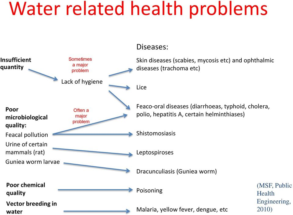 major problem Feaco-oral diseases (diarrhoeas, typhoid, cholera, polio, hepatitis A, certain helminthiases) Shistomosiasis Leptospiroses