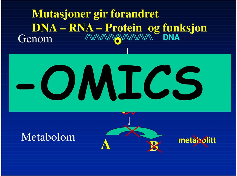 DNA Transkriptom mrna