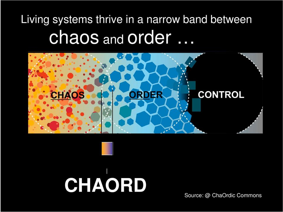 and order CHAOS ORDER