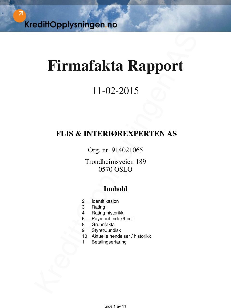 Rating 4 Rating historikk 6 Payment Index/Limit 8 Grunnfakta 9