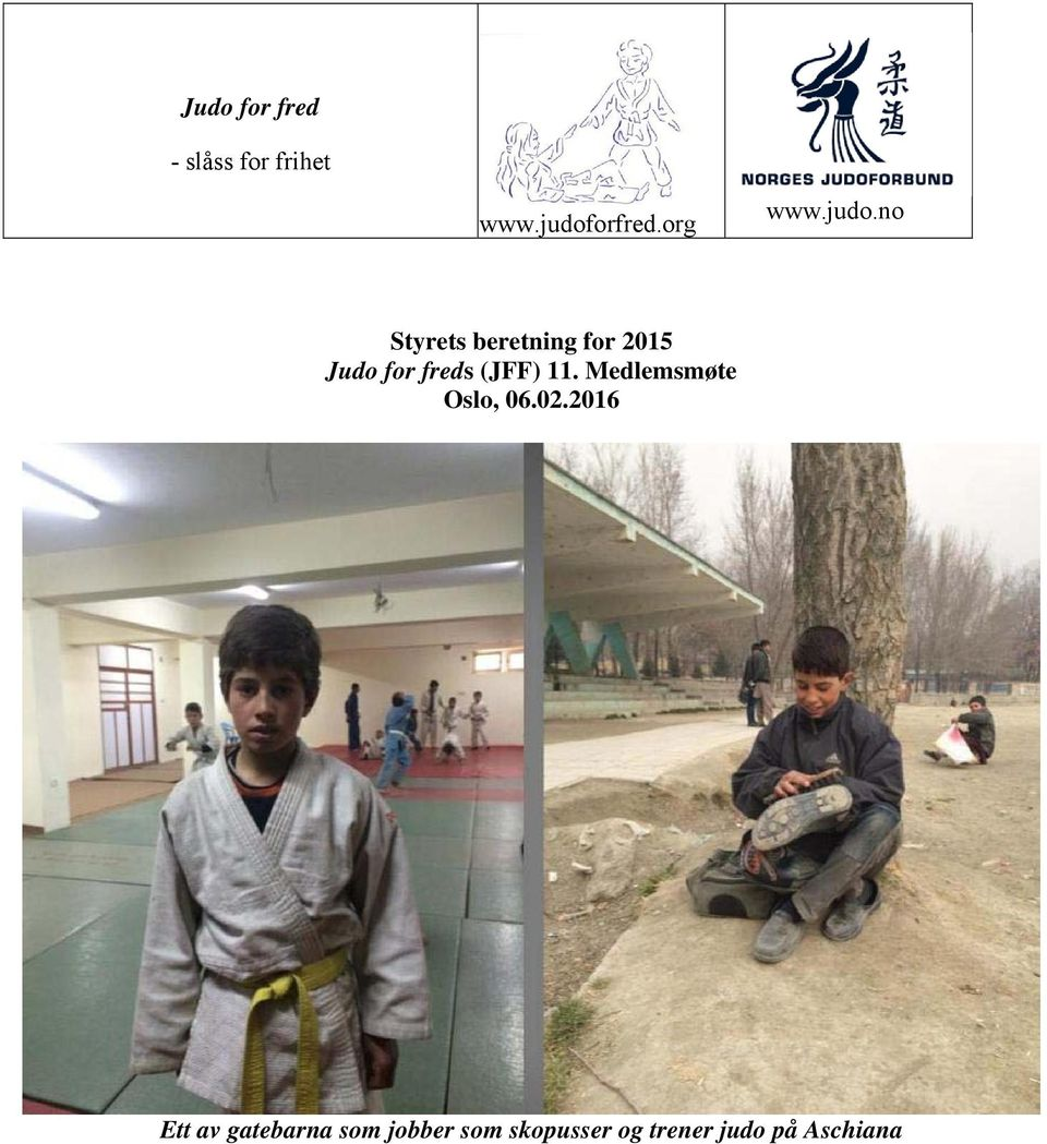 no Styrets beretning for 2015 Judo for freds (JFF) 11.