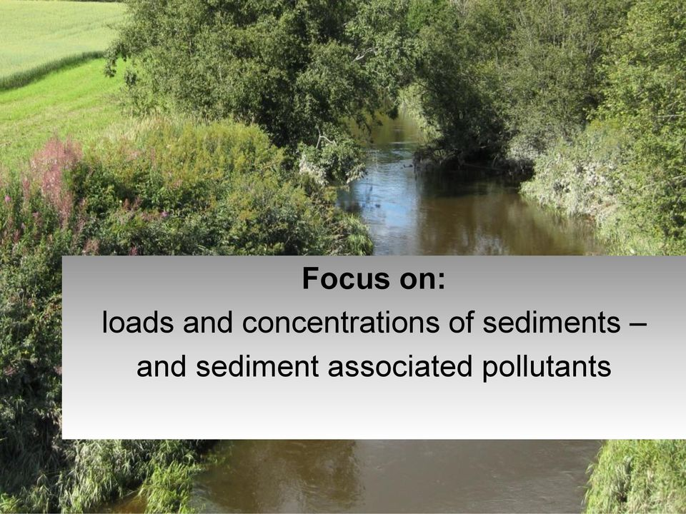 sediments and