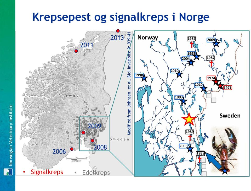 Biol Invasions; 9: 939-41 Norway 1998 2010 1993 1987