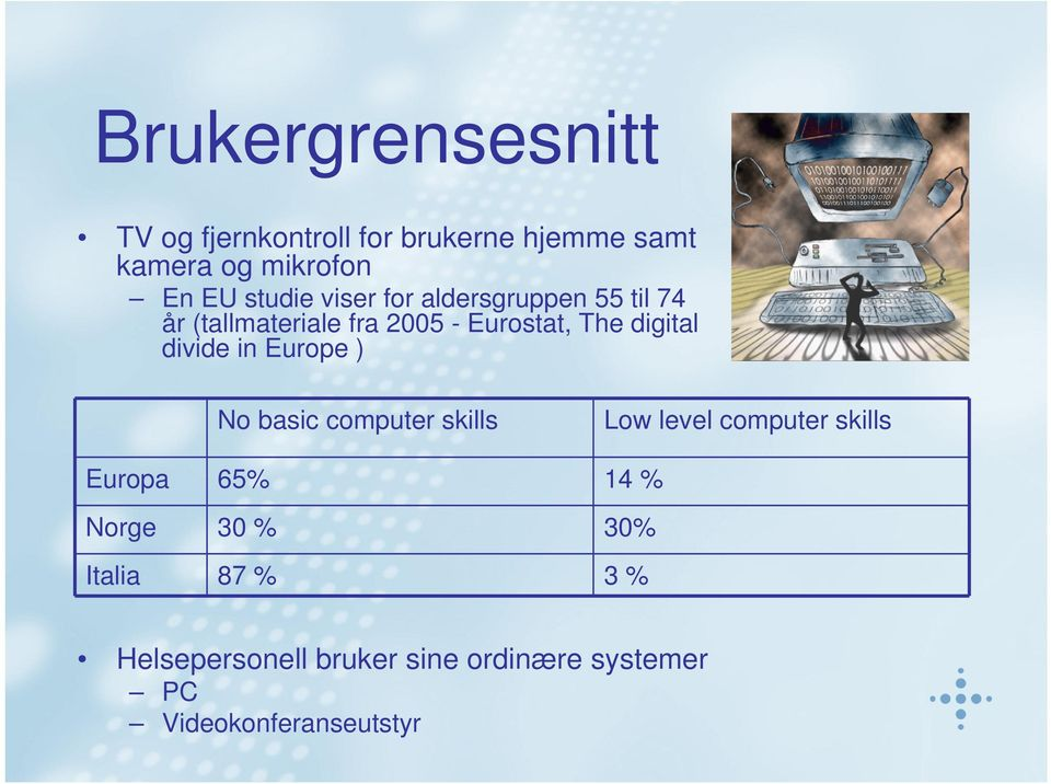 divide in Europe ) No basic computer skills Low level computer skills Europa 65% 14 % Norge