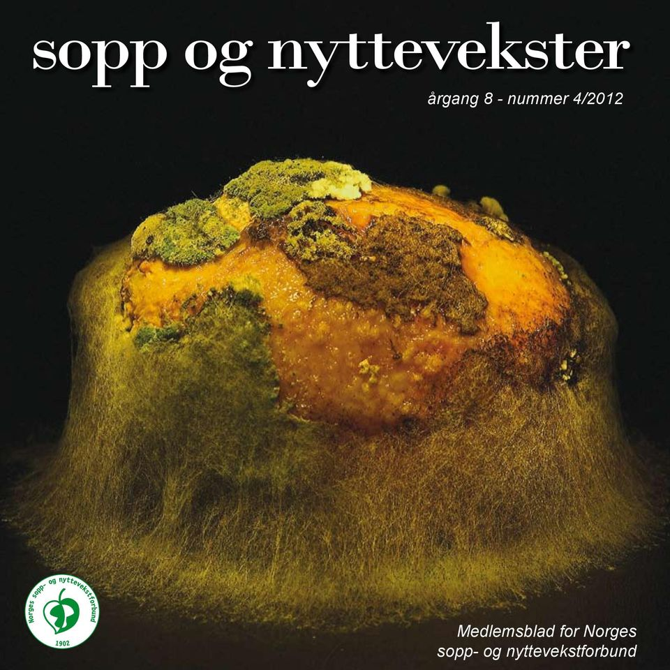 4/2012 Medlemsblad for