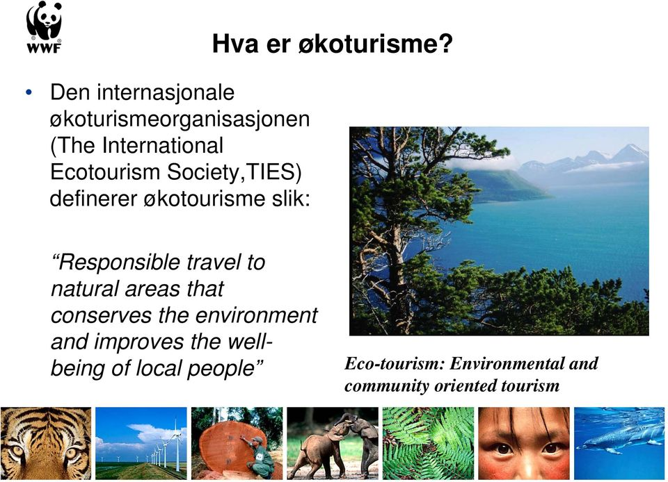 Responsible travel to natural areas that conserves the environment and