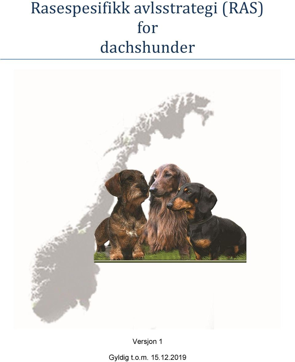 for dachshunder
