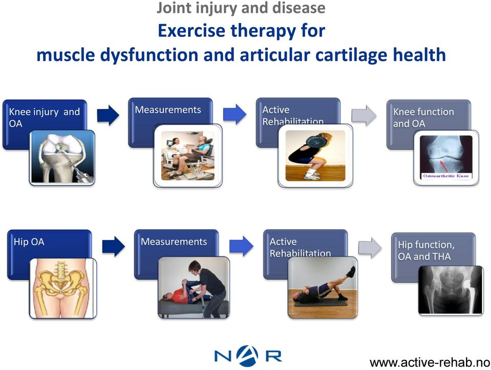 Active Rehabilitation Knee function and OA Hip OA Measurements
