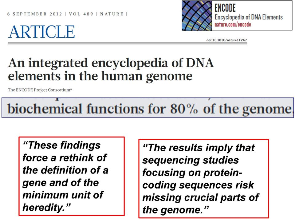 The results imply that sequencing studies focusing on