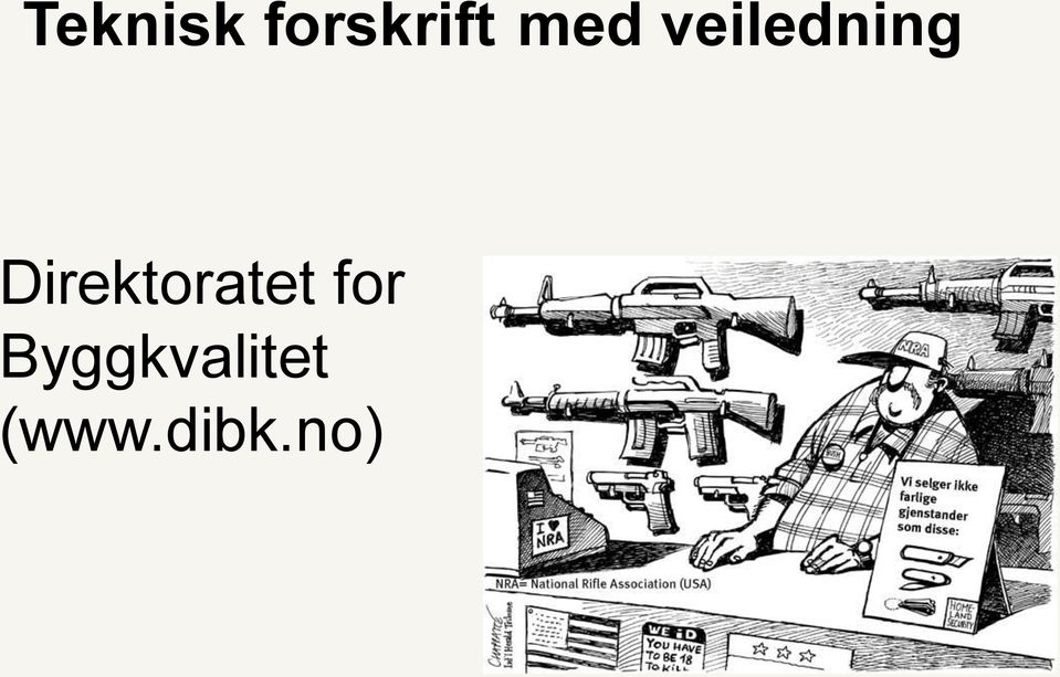 Direktoratet for