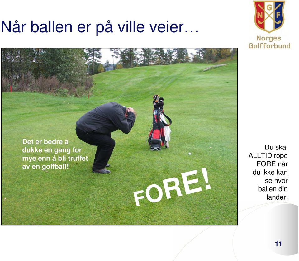 en golfball! FORE!