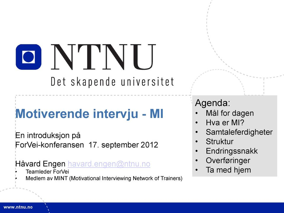 no Teamleder ForVei Medlem av MINT (Motivational Interviewing Network of
