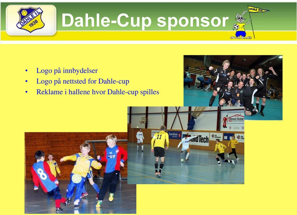 nettsted for Dahle-cup