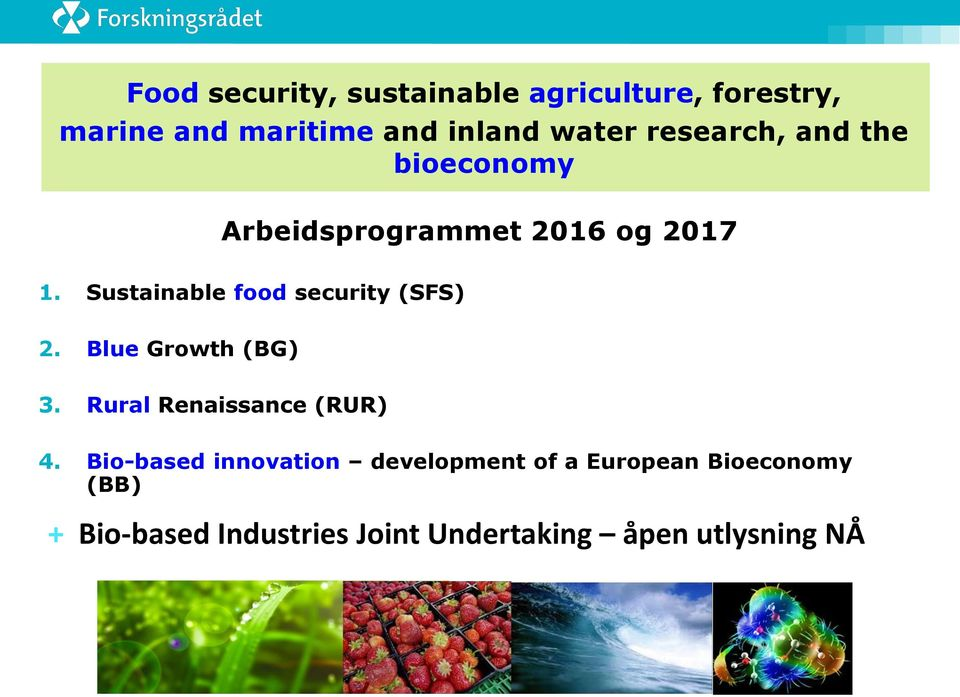 Sustainable food security (SFS) 2. Blue Growth (BG) 3. Rural Renaissance (RUR) 4.