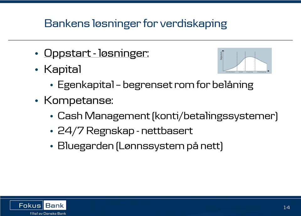 belåning Kompetanse: Cash Management