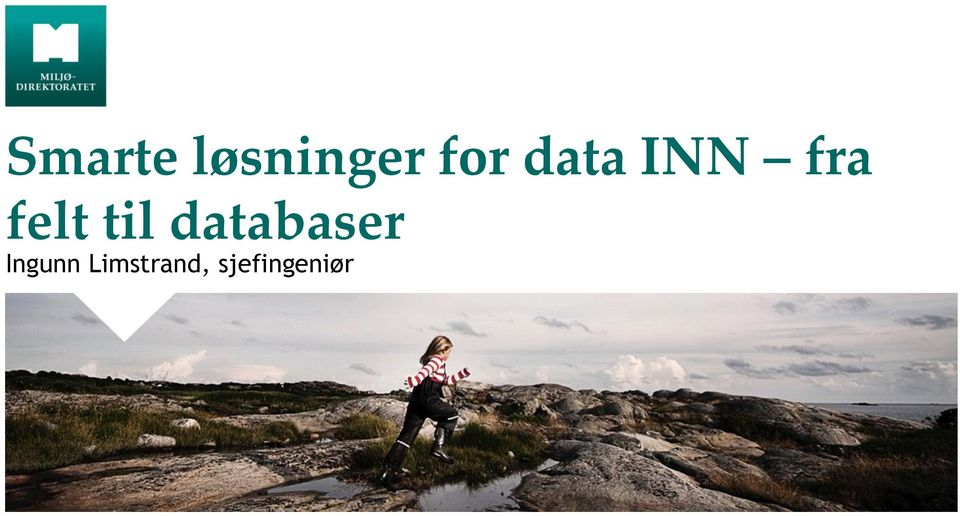 til databaser Ingunn