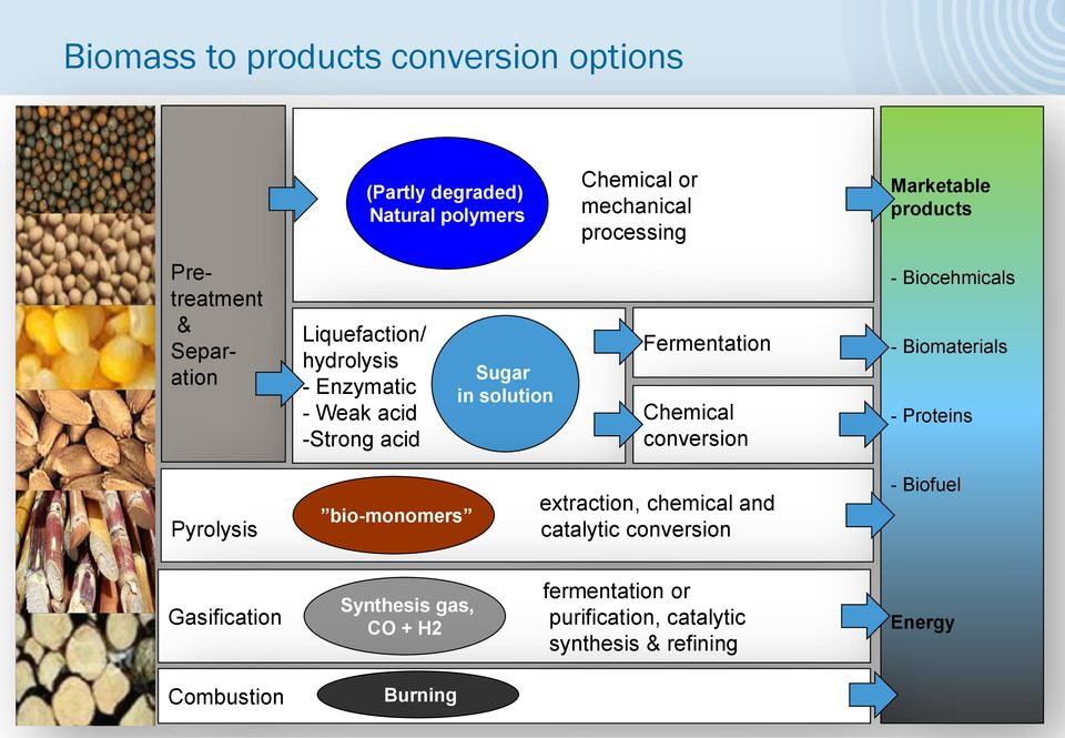 conversion - Biocehmicals - Biomaterials - Proteins Pyrolysis bio-monomers extraction, chemical and catalytic conversion -