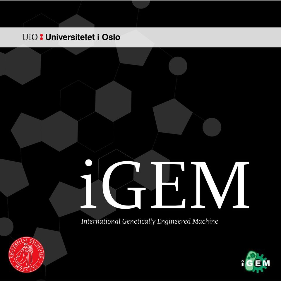 MACHINE 1 igem