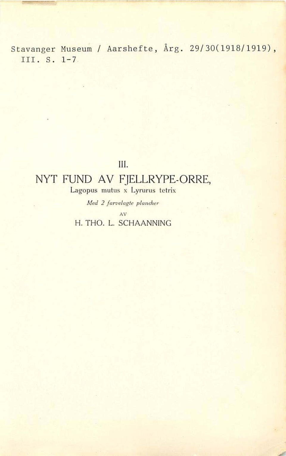 NYT FUND A V FJELLRYPE-ORRE, Lago pus mulus x