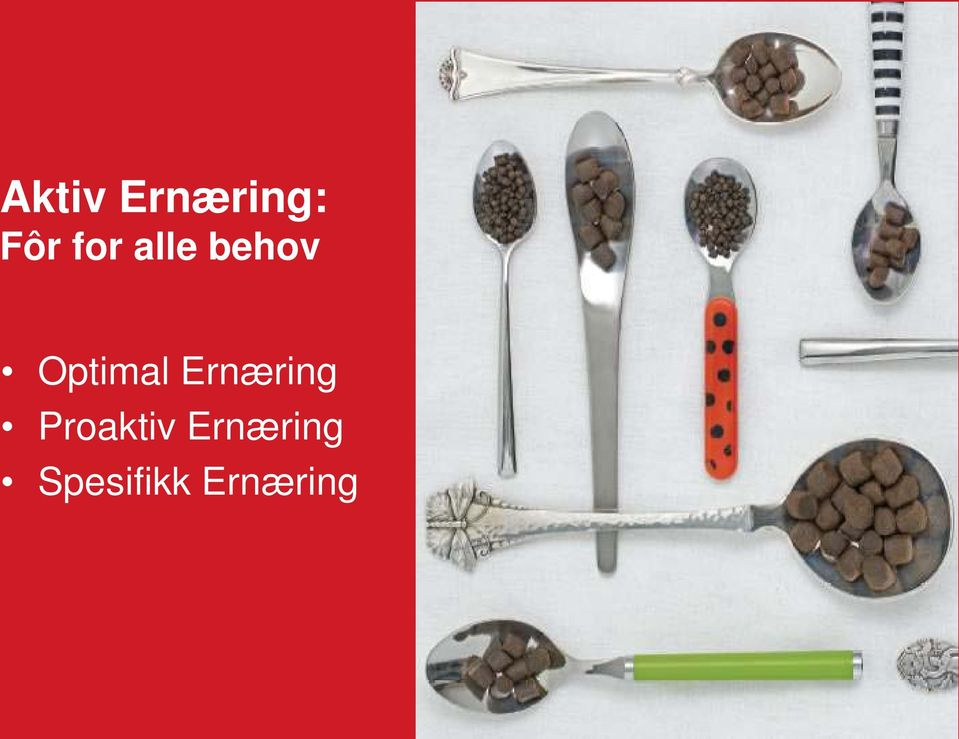 Optimal Ernæring