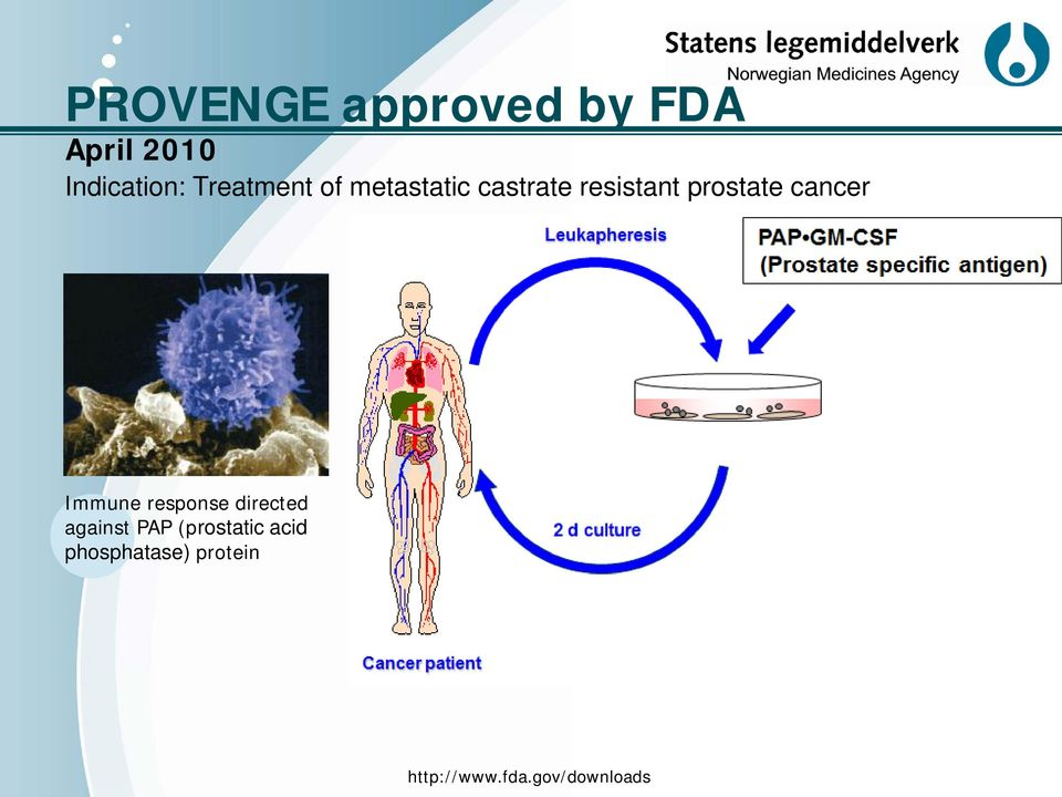 cancer Immune response directed against PAP