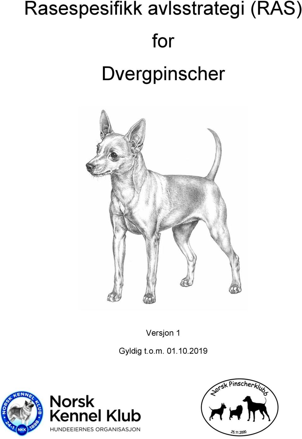 for Dvergpinscher