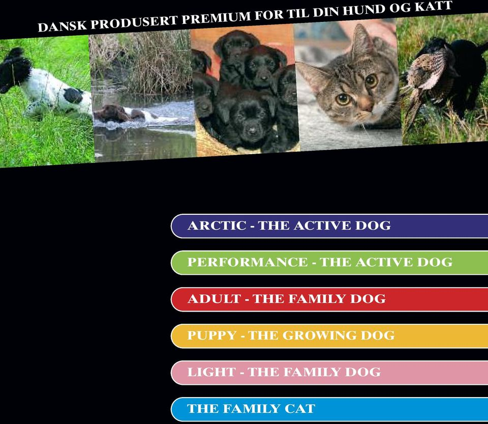 ACTIVE DOG ADULT - THE FAMILY DOG PUPPY - THE