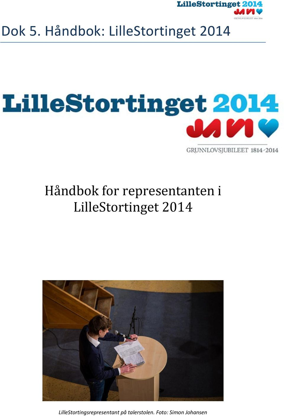 for representanten i LilleStortinget