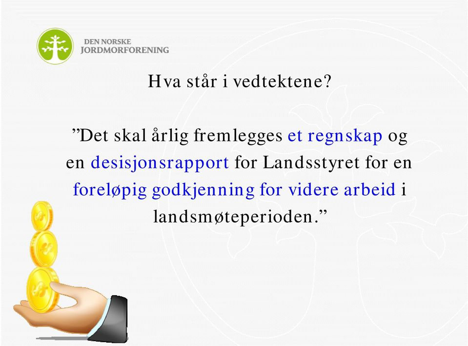 en desisjonsrapport for Landsstyret for