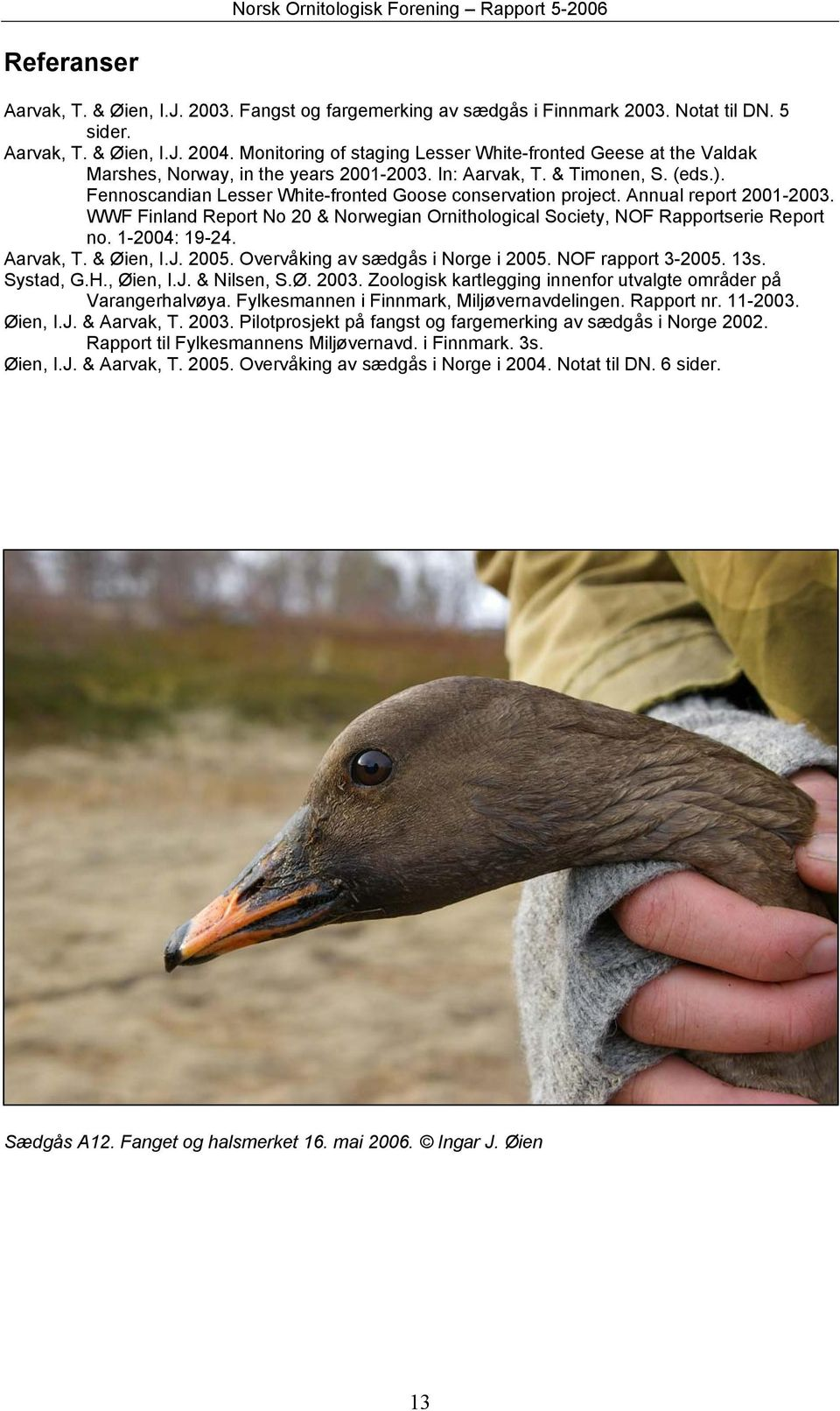 Fennoscandian Lesser White-fronted Goose conservation project. Annual report 2001-2003. WWF Finland Report No 20 & Norwegian Ornithological Society, NOF Rapportserie Report no. 1-2004: 19-24.