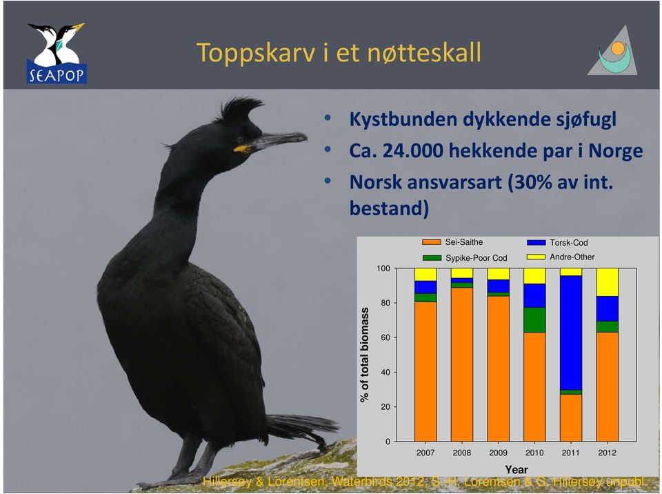 bestand) 100 Sei-Saithe Sypike-Poor Cod Torsk-Cod Andre-Other % of total biomass