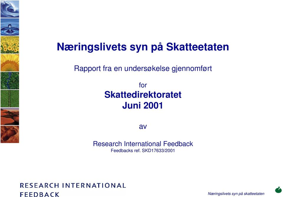 Skattedirektoratet Juni 2001 av Research