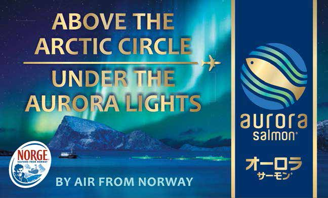 ABOVE THE ARCTIC CIRCLE UNDER THE AURORA LIGHTS Above the Arctic Circle where the winters are long and summers are mild you can find the exclusive Aurora