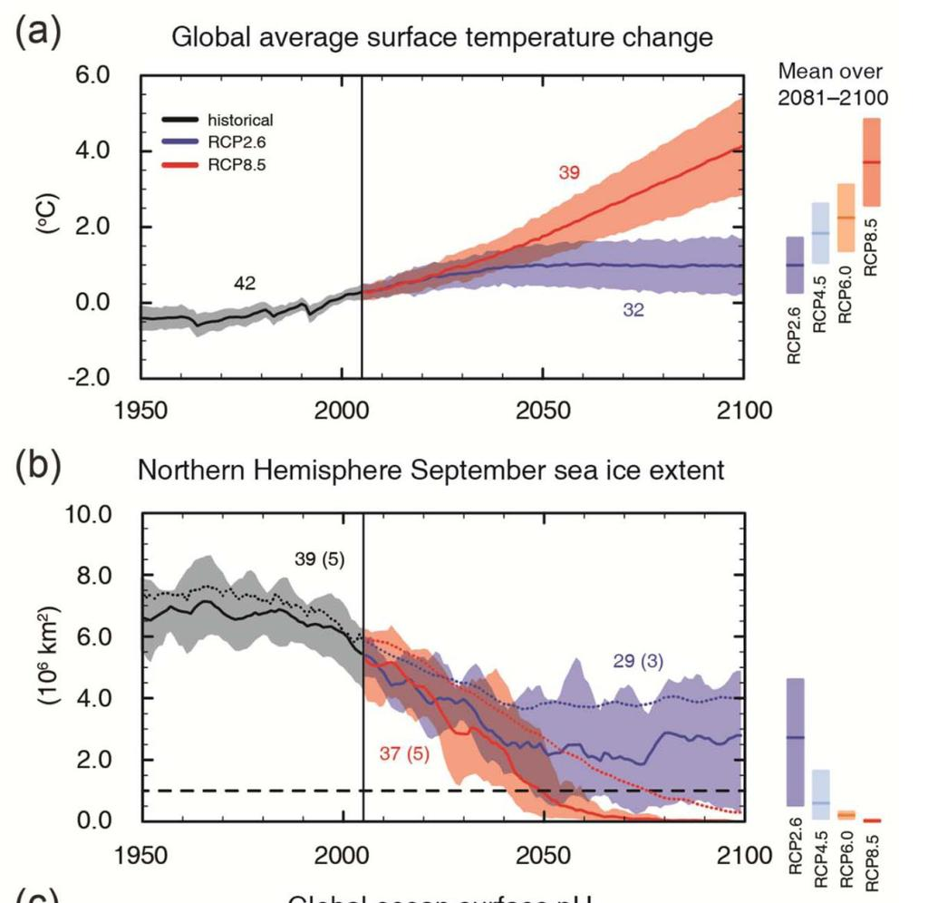 Future changes RCP 8.5 warming 2081-2100: 3.7 (2.6 to 4.8) C relative to 1986-2005 RCP 2.6 warming 2081-2100: 1.0 (0.3 to 1.7) C relative to 1986-2005 Observed warming 1986-2005: 0.