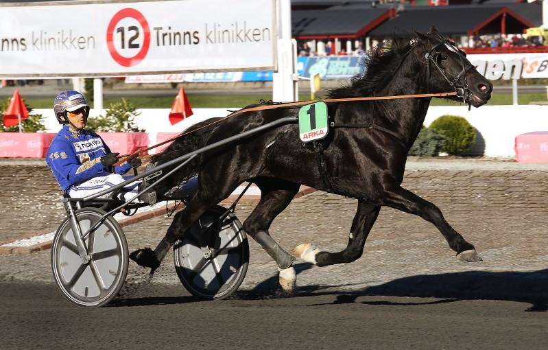 Totalisatorløp 9 BI F : 9 - - -,a -. : - - - - -,a -. Tot: - - - - TWILIGHT.. () 9,,A. år Lysbrun HP v. Good As Gold (S) e. Gucci () v. Lindy's Crown Oppdr.